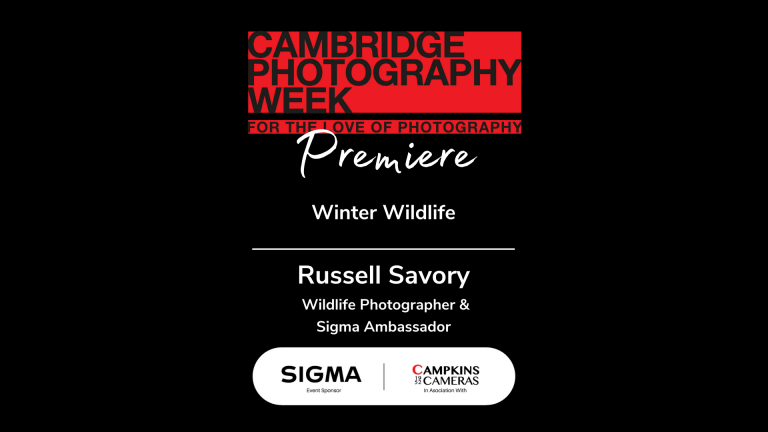 Winter Wildlife with Russell Savory, Wildlife Photographer & Film Maker